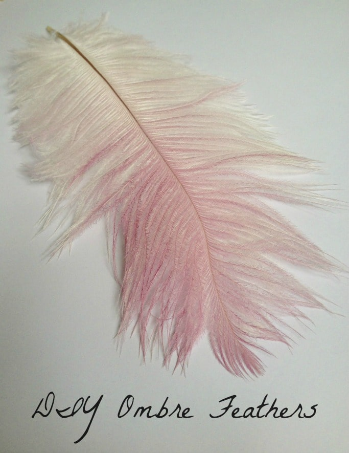 diy ombre feathers