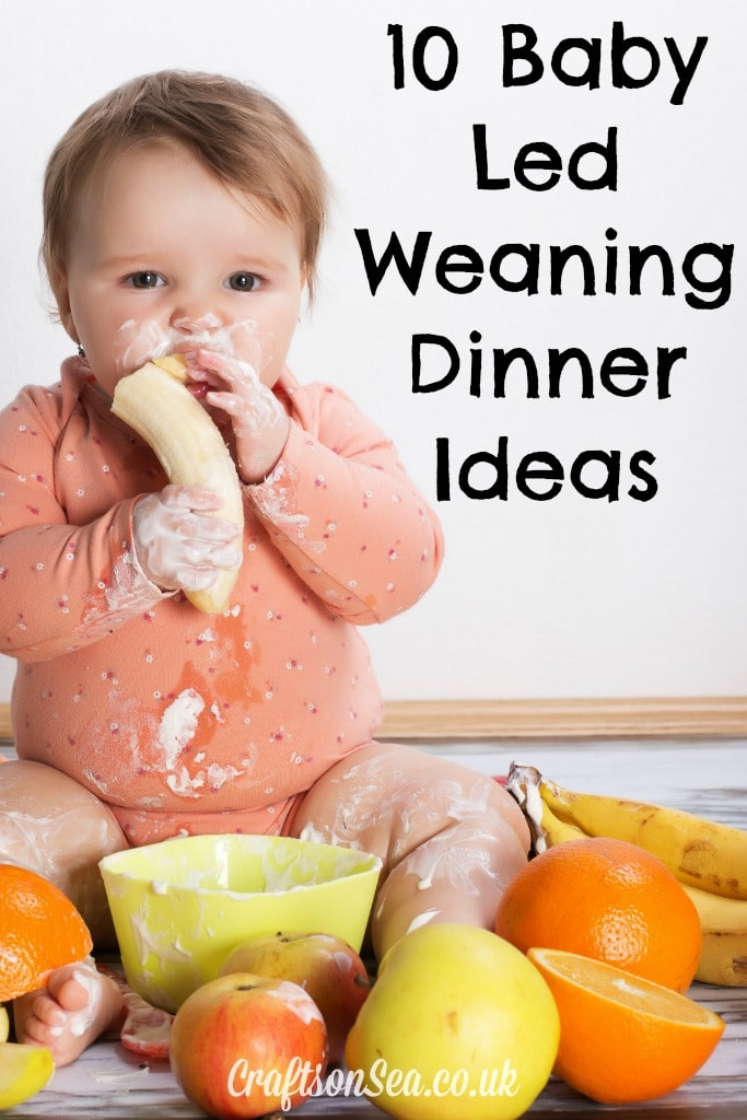 10 Baby Led Weaning Dinner Ideas