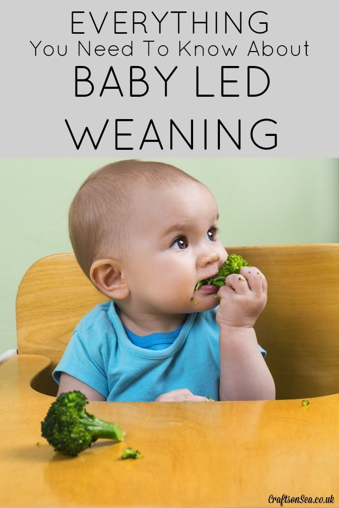 everything you need to know about baby led weaning