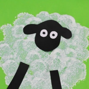 pom pom sheep 300