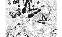 Free Butterflies Coloring Page for Adults