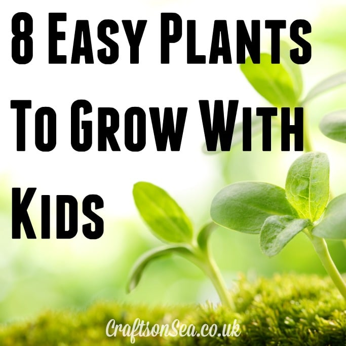 plants to grow with kids