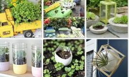 enchanting mini planters