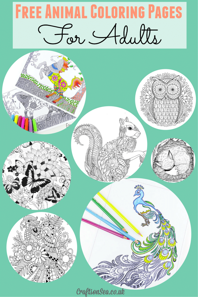 My garden colouring pages for Dog crafts for adults