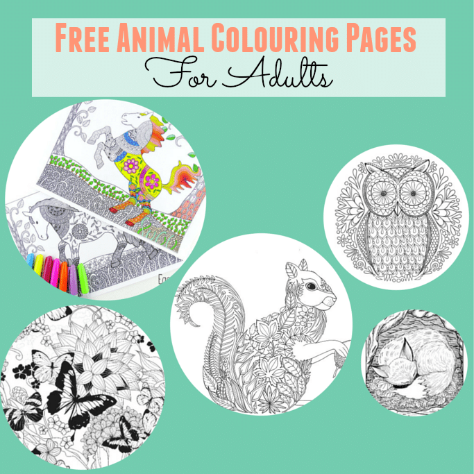 free animal colouring pages for adults
