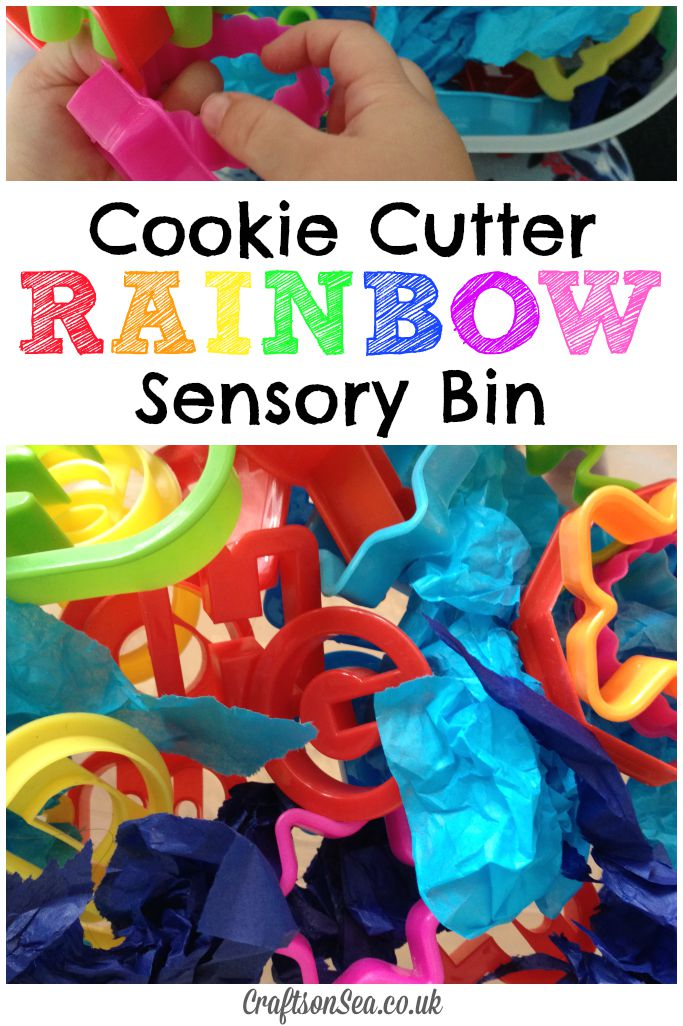 Cookie Cutter Rainbow Sensory Bin