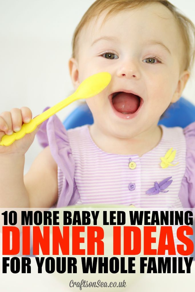 10 More Baby Led Weaning Dinner Ideas For Your Whole