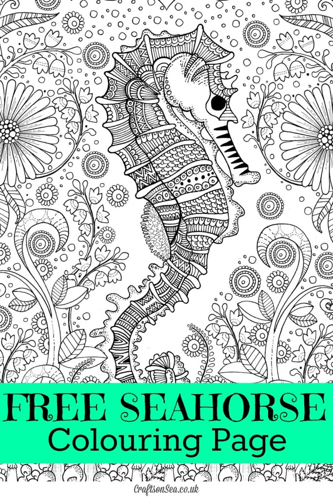 Free Seahorse Colouring Page for Adults