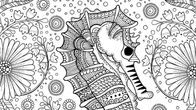 Save Share Colouring Pages For Adults Free Seahorse