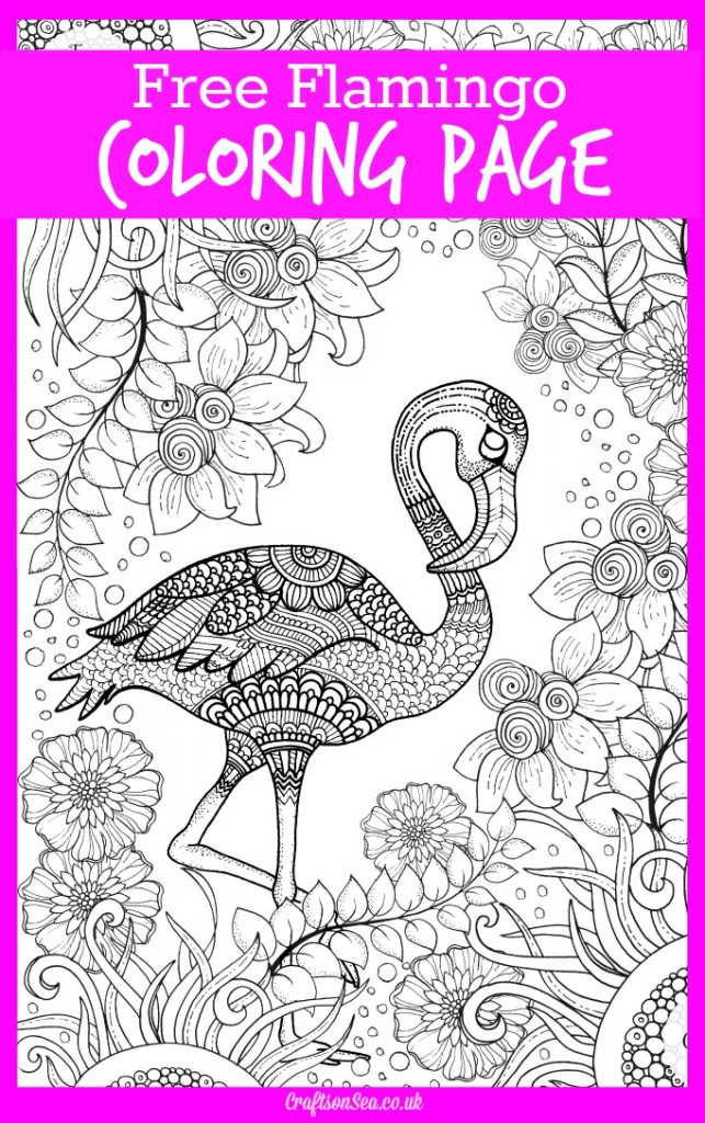 free coloring page for adults flamingo