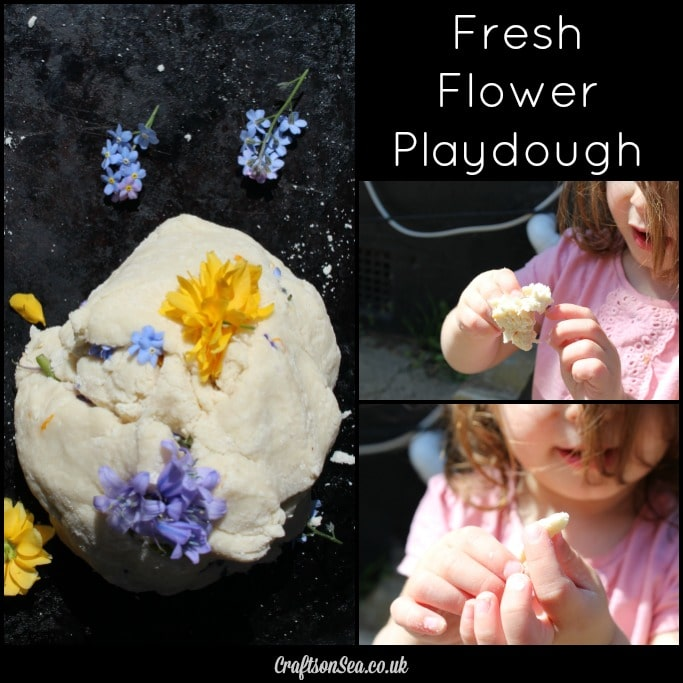 fresh flower playdough collage