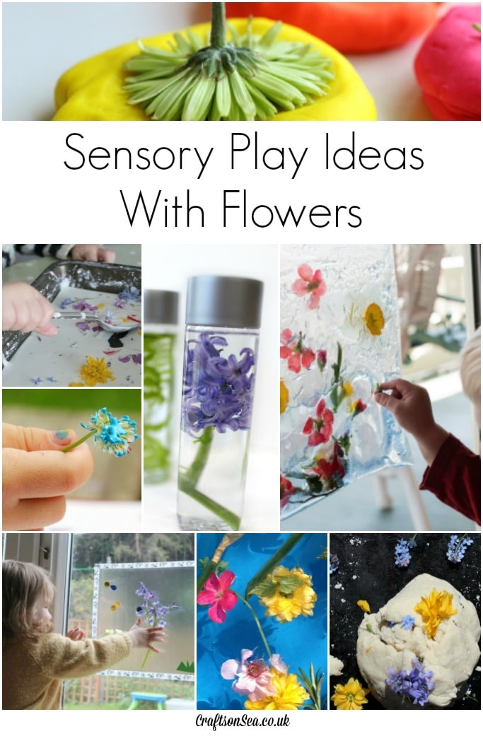 sensory play ideas with flowers