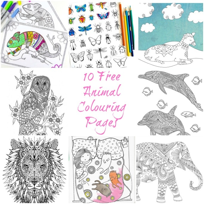 10 Animal Adult Coloring Pages