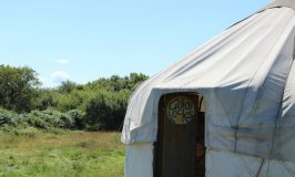 We stayed at South Penquite Farms and now I want to live in a yurt