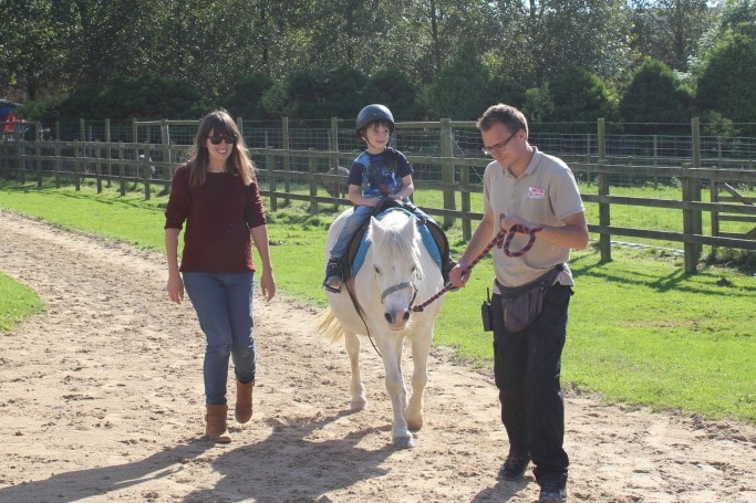 camel-creek-cornwall-pony-ride-review