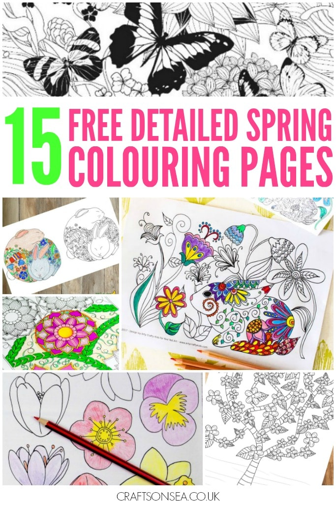 detailed spring colouring pages