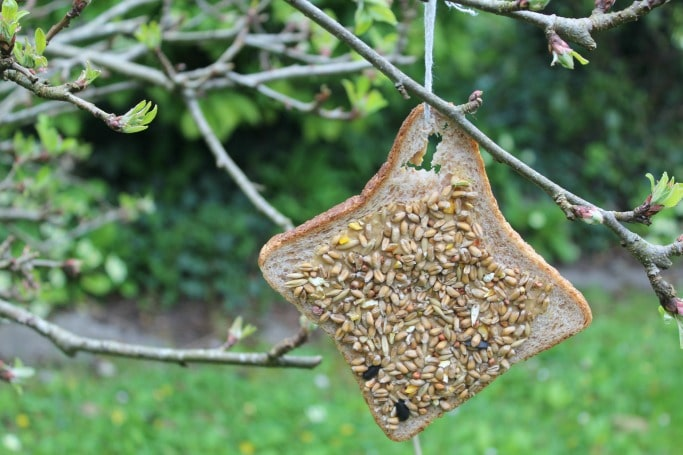 Easy bird feeder for kids to make crafts on sea for How to build a bird feeder easy