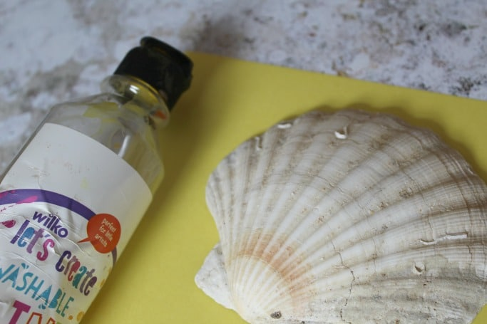 kids sea shell craft lion