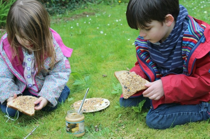 simple bird feeder for preschoolers