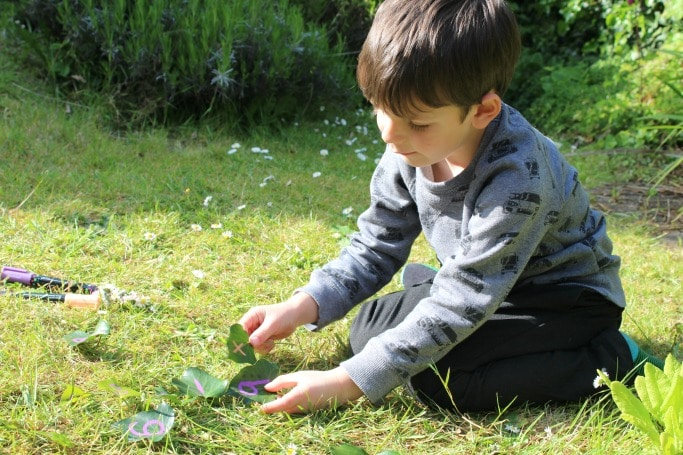 7 Ideas for learning outside with leaves