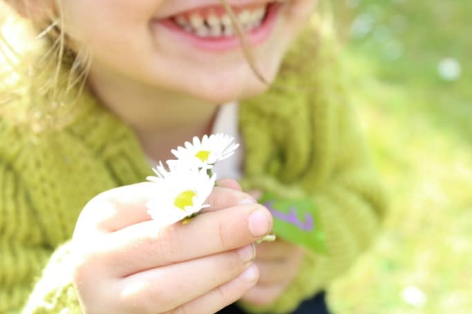 outdoor learning ideas with daisies
