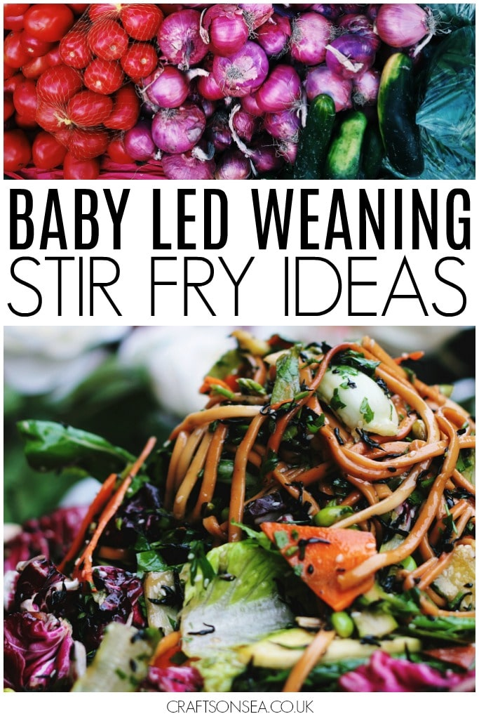 baby led weaning stir fry ideas