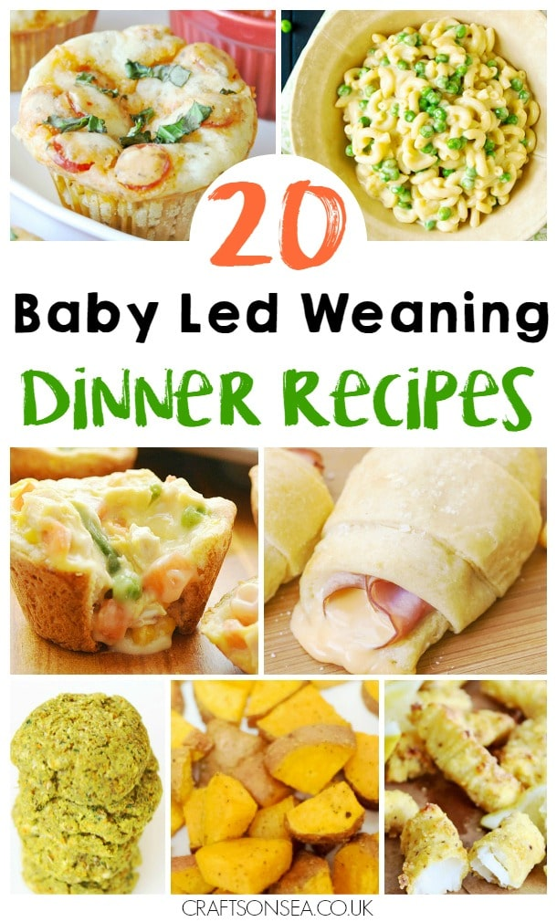 baby led weaning dinner ideas