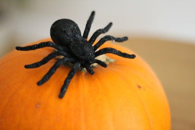 poundworld halloween spider