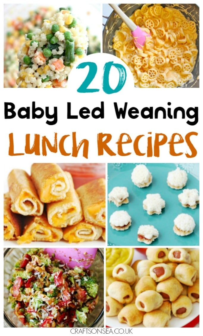 baby led weaning lunch ideas and recipes