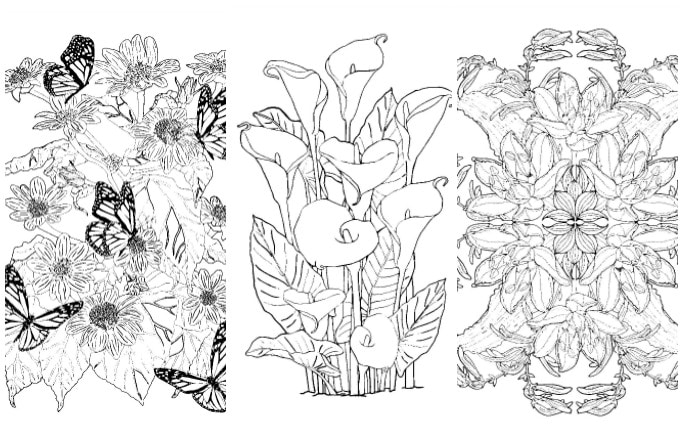 Exotic wildflowers colouring pages
