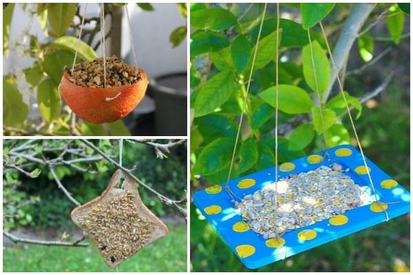 Easy diy bird feeders kids can make