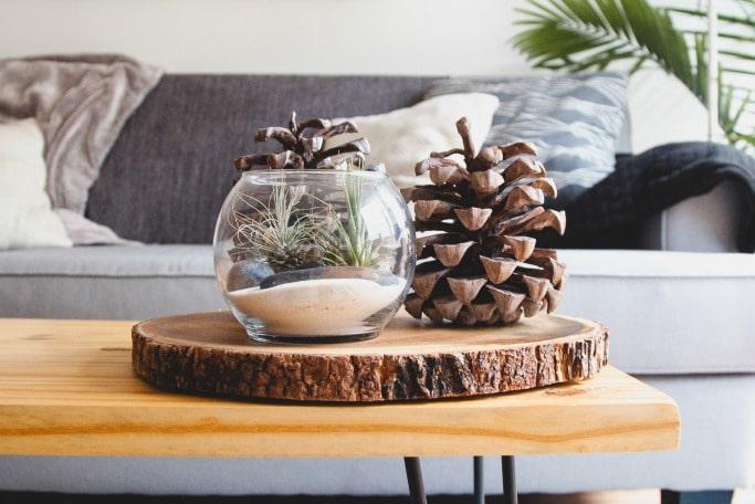 pine cones front room