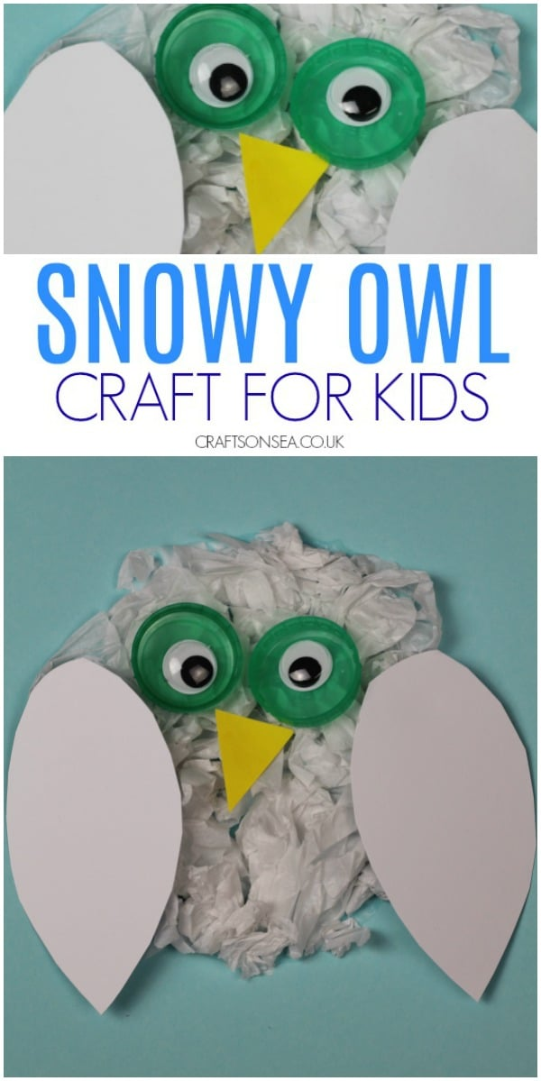 snowy owl craft for kids preschool