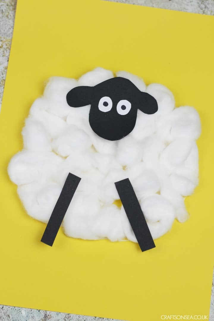 easy cotton ball sheep craft for preschoolers toddlers
