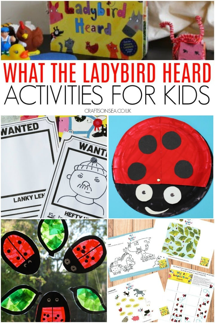what the ladybird heard activities for kids