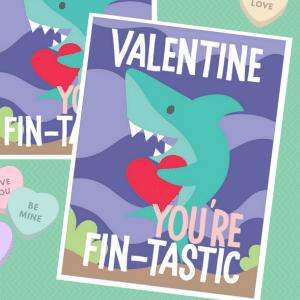 shark valentine