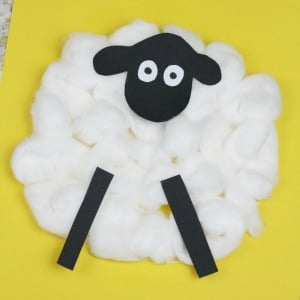 sheep craft cotton wool