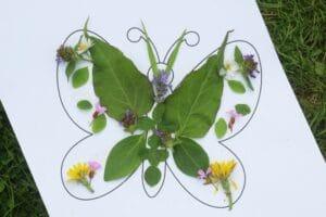 butterfly activity for kids preschool