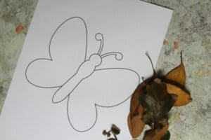 butterfly template with fall leaves