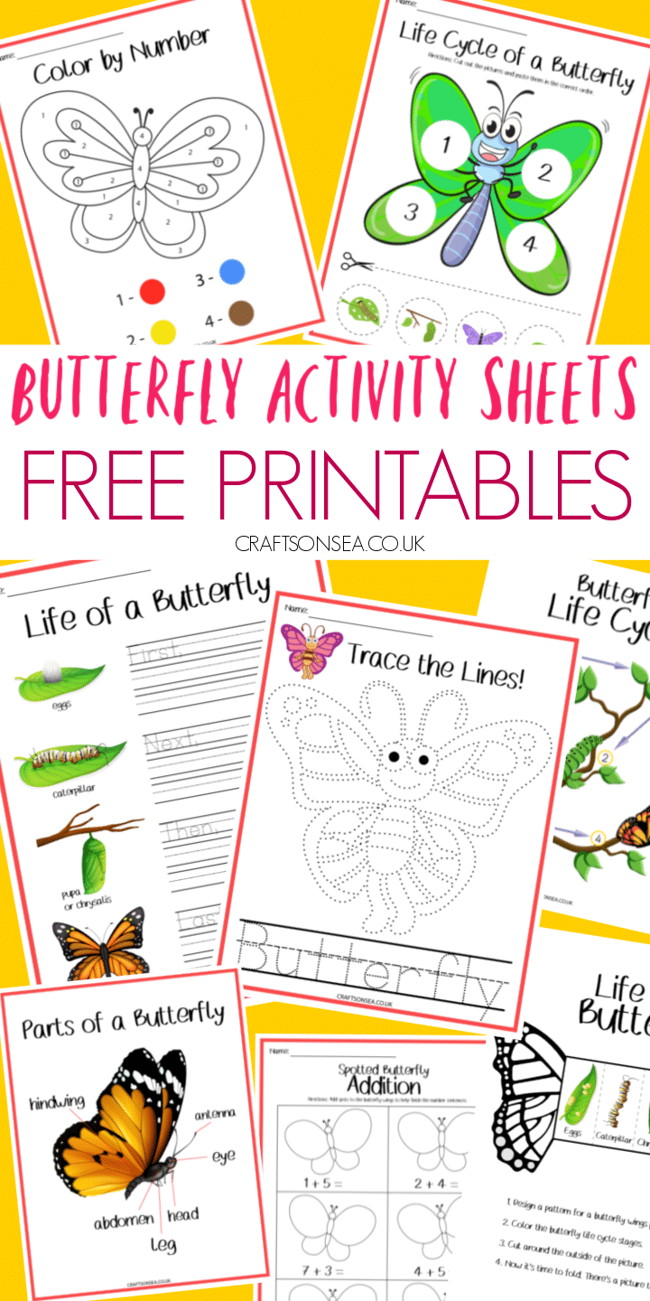 butterfly activity sheets free printable PDF
